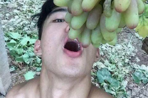 农村小伙地里摘葡萄,身材成了亮点!